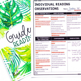 Guided Reading Part 1: Getting Started