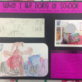 The Writing on the Wall!: Collecting Writing Samples to See the Students' Progress